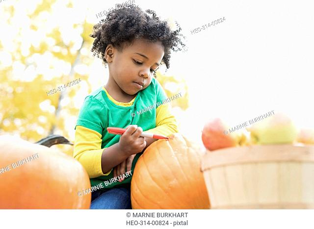 Girl drawing carving pumpkin