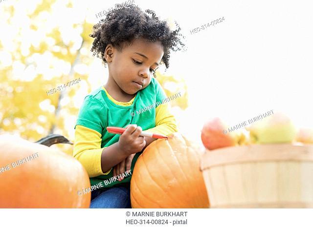 Girl drawing carving pumpkin