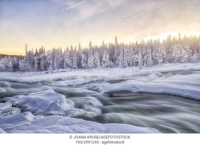 Storforsen, Swedish Lapland, Sweden, Europe
