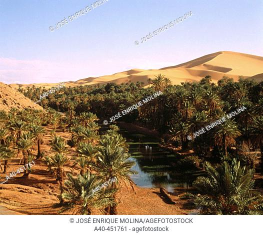 Taghit oasis. Grand Erg Occidental. Sahara. Algeria