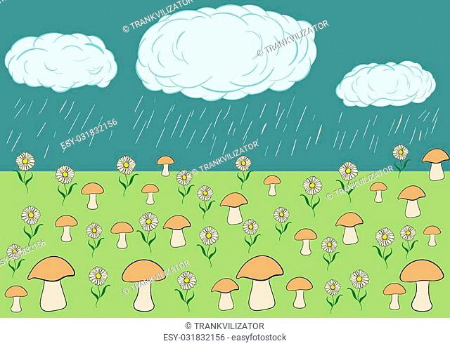 The landscape a rain waters a glade with mushrooms and camomiles