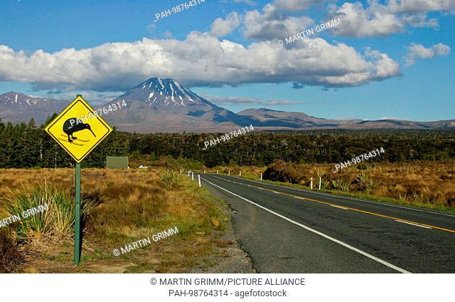 funny Kiwi-Warning Sign at State Highway 4, Tongariro National Park, New Zealand | usage worldwide. - Ohakune/Manawatu-Wanganui/New Zealand