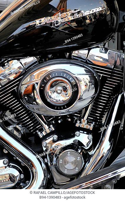 Harley Davidson motorcycle detail