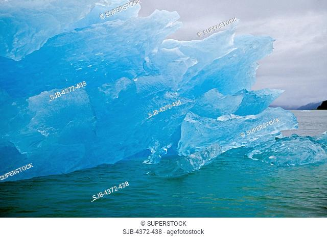 Blue ice from the Le Conte Glacier, the southernmost tidewater glacier in the United States, near Petersburg, in South East Alaska, on the Inside Passage