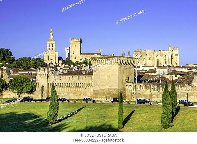 France, Provence region, Avignon city, the Popes Palace , skyline, W.H.