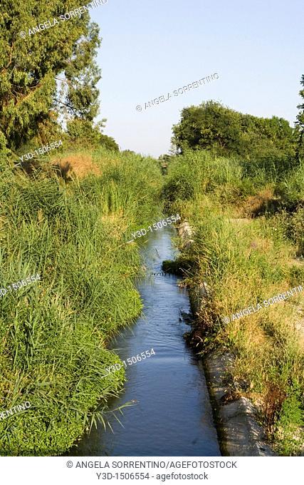 Creek Sinni in Basilicata region, Italy