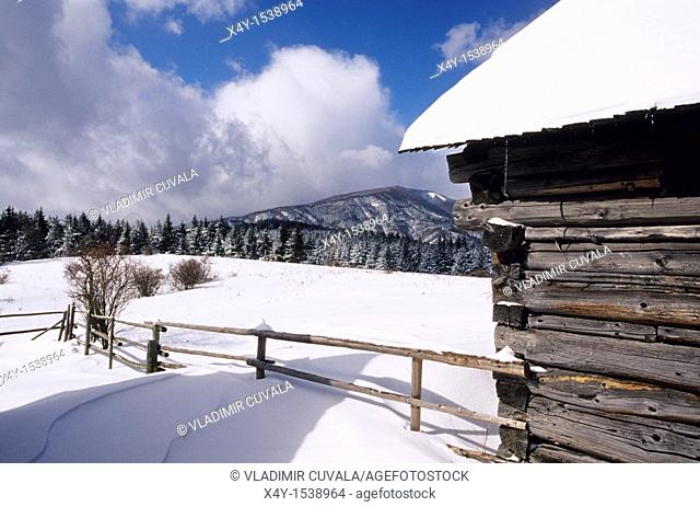 A wooden cottage at the Podsip settlement in Velka Fatra mountains, Slovakia