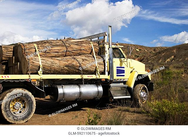 Semi truck loaded with logs Stock Photos and Images | age