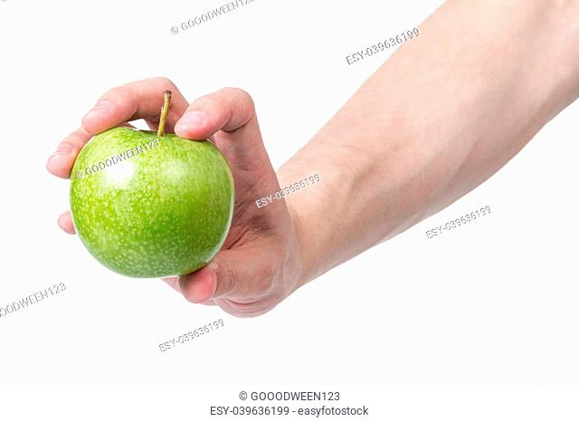 adult man hand holding green apple, isolated on white