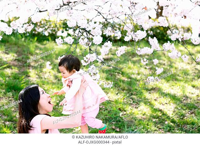 Japanese mom and daughter enjoying the cherry blossoms