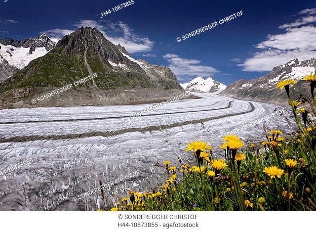 Aletschgletscher VS