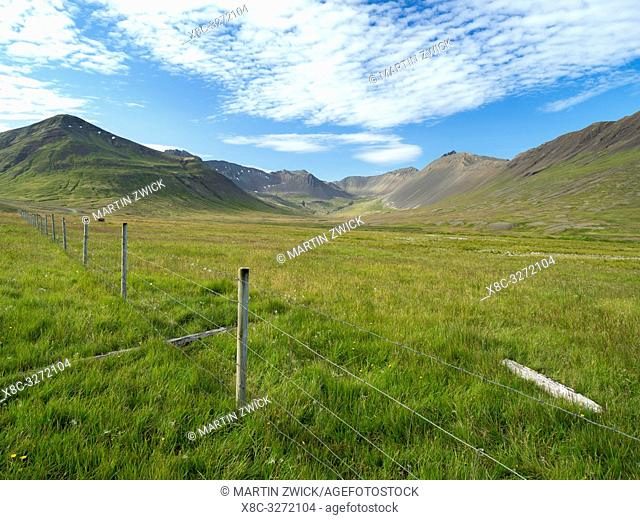 Landscape on the Thingeyri peninsula. The remote Westfjords (Vestfirdir) in north west Iceland. Europe, Scandinavia, Iceland