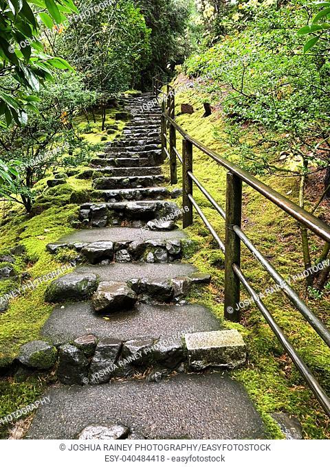 Garden staircase through moss and forest land at the Japanese Tea Garden in Portland Oregon