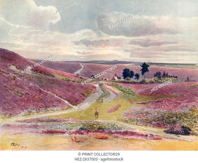 'Moorland at Frensham', 1912, (1914). Artist: James S Ogilvy