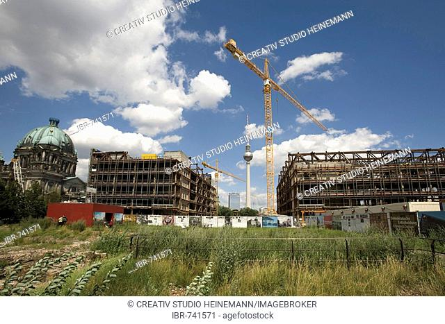 Construction site - Palast der Republik building in East Berlin, former GDR, the Berlin Cathedral (left) and telecommunications tower in the background, Berlin