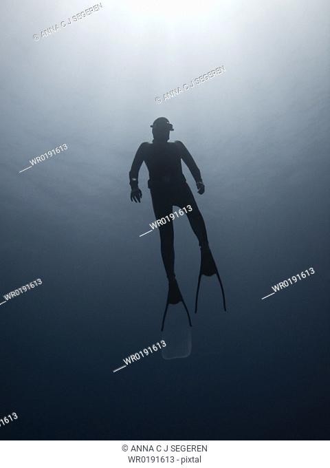 Freediver on his way to the surface Ras Umm Sid, Sharm El Sheikh, South Sinai, Red Sea, Egypt