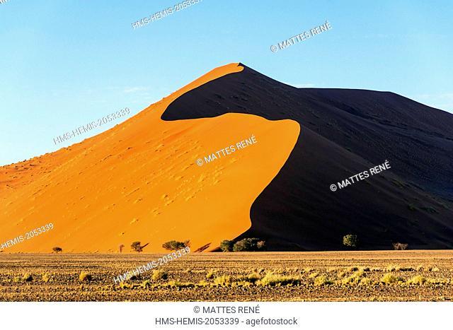 Namibia, Hardap region, Namib desert, Namib-Naukluft national park, Namib Sand Sea listed as World Heritage by UNESCO, Sossusvlei dunes