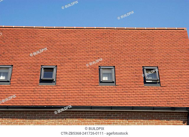 Velux windows on a tiles roof