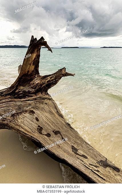 Footmark on driftwood at a beach on the Banyak Islands