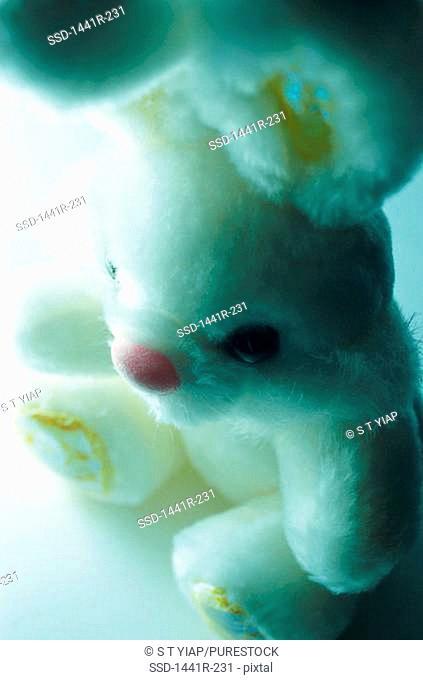 High angle view of a stuffed animal