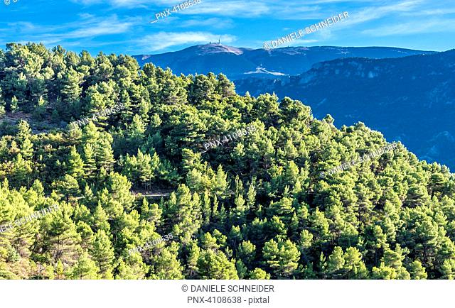 France, Drome, The Provencal Baronnies Regional Natural Park, landscape, The Mont Ventoux mountains in the background