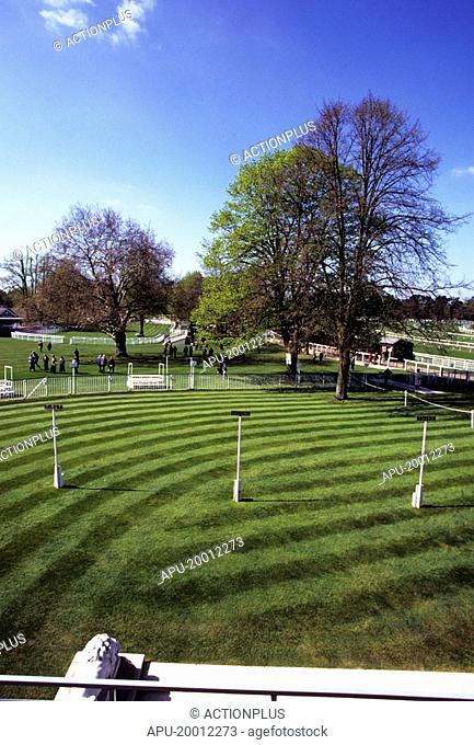 Railings around parade ring at a horse race course
