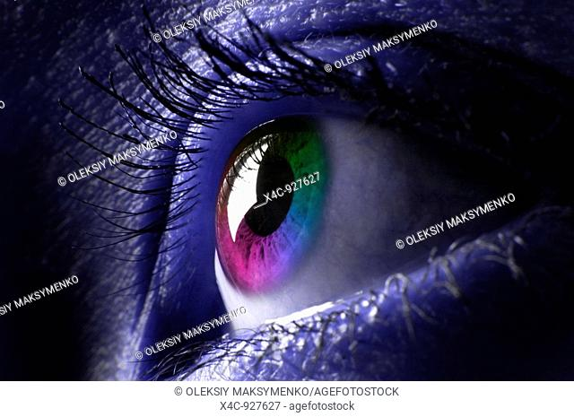 Closeup of a colorful womans eye