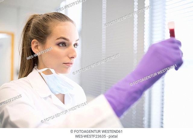 Scientist in lab examining blood sample