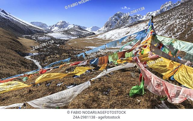 Tibetan landscape in China with prayer flags on foreground and mountains and yaks on background