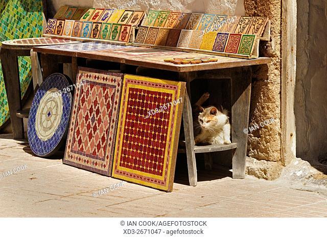 catunder a table, Rue Al Mellah, Medina, Essaouira, Morocco