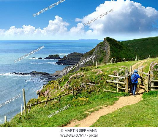 Great Britain, England, Devon, Hartland, Hartland Quay, Female hiker opening gate, coastal path