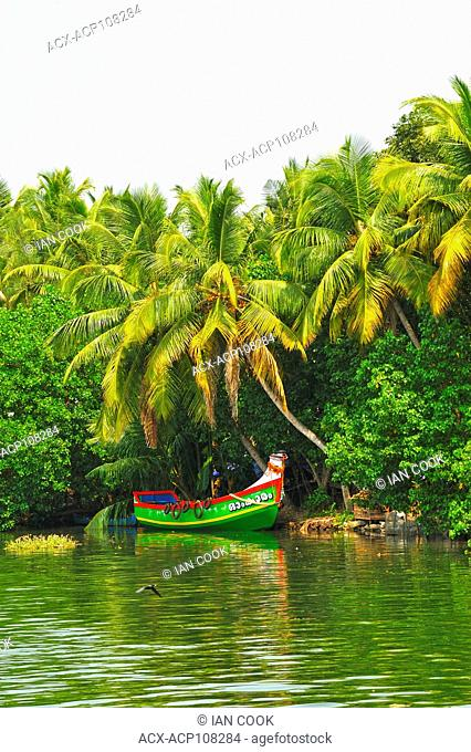 moored fishing boat in backwaters between Kollam and Cochin, Kerala, India