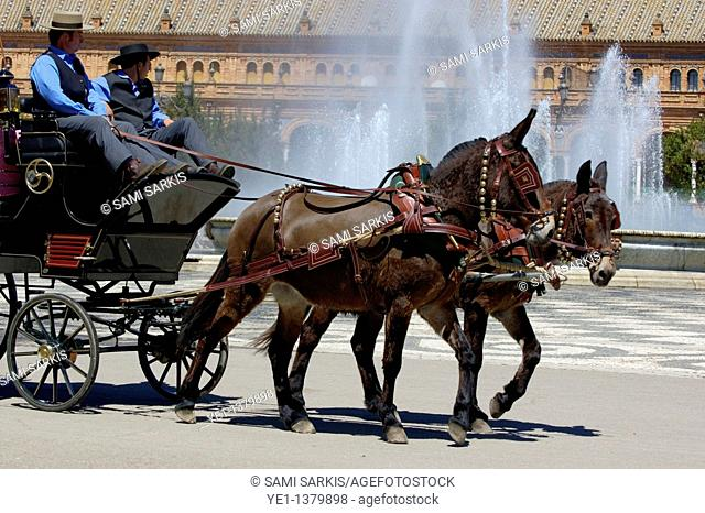 Horsedrawn cart driving people around the Plaza de Espana during the Feria De Abril, Seville, Andalusia, Spain