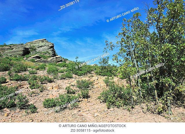 Sierra de Caldereros. Molina-Alto Tajo Geopark. Campillo de Dueñas town, Guadalajara province, Spain