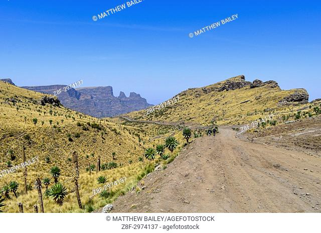 A dirt road snakes around the Simien Mountains of Northern Ethiopia