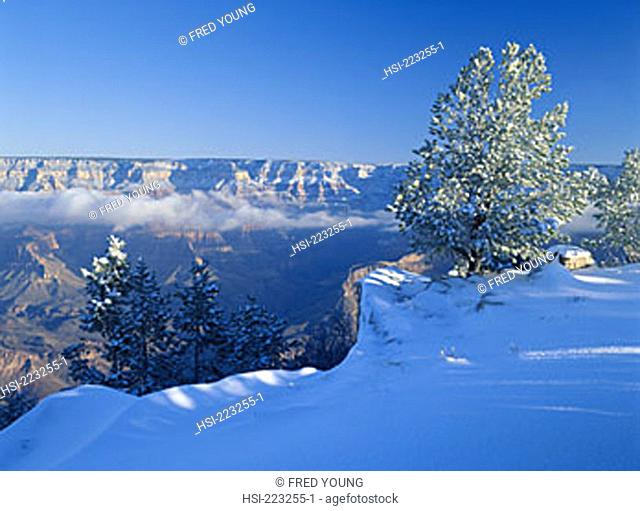 North America, United States of America, USA, U.S.A., America, Arizona, Grand Canyon NP, winter, snow, low-lying cloud, landscape, canyon