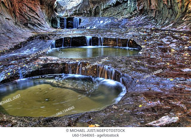 Pools of dripping water in 'The Subway' along the left fork of North Creek at Zion National Park,Utah