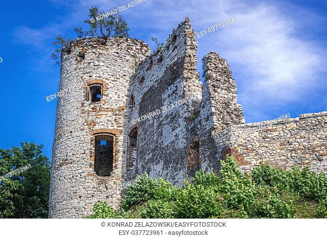 Ruined tower of Tenczyn Castle in Rudno village on the Trail of the Eagles Nests in Lesser Poland Voivodeship of Poland