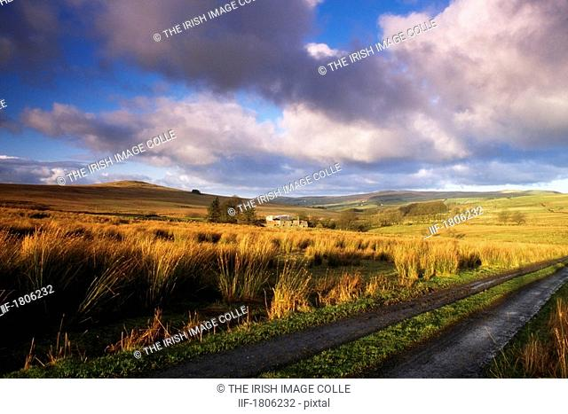 County Antrim rural field