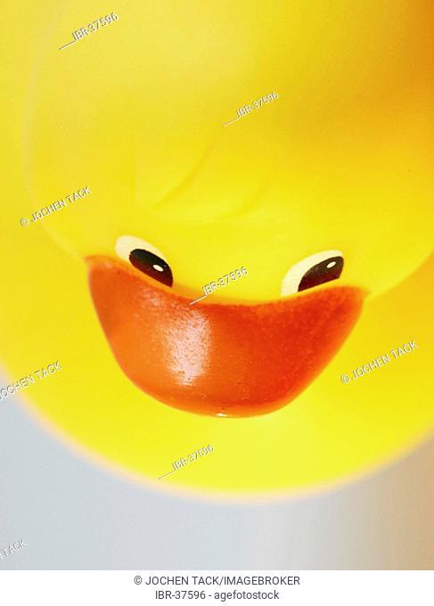 DEU, Germany : Yellow rubber duck