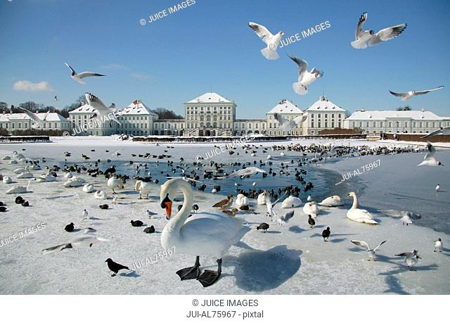 View of birds and Nymphenburg Castle, Munich, Upper Bavaria, Germany