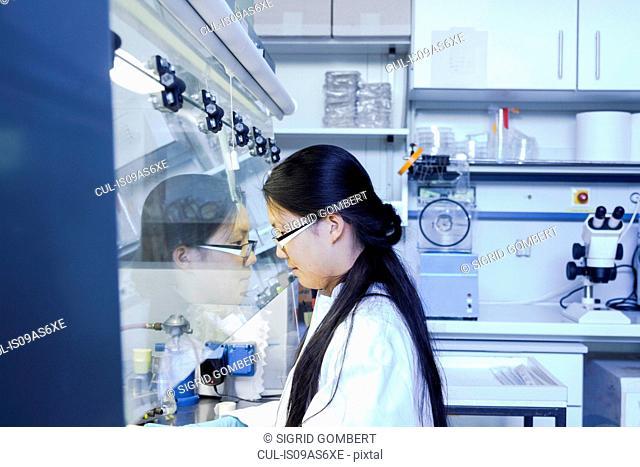 Female scientist inspecting fume hood in laboratory