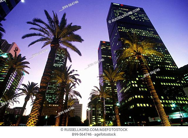 Palm Trees, Figueroa Street, Downtown, Los Angeles, California, Usa