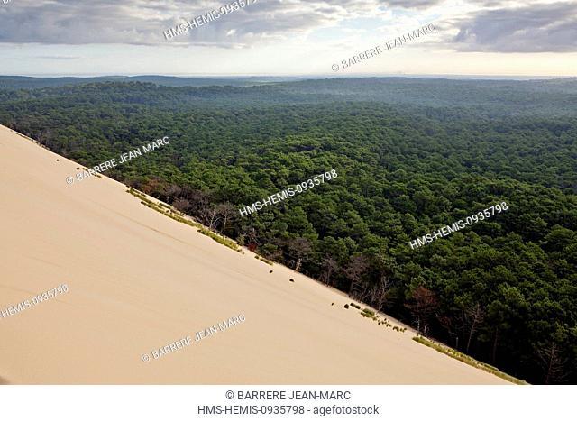France, Gironde, Bassin d'Arcachon, Landes Forest, Dune du Pilat (the Great Dune of Pyla)
