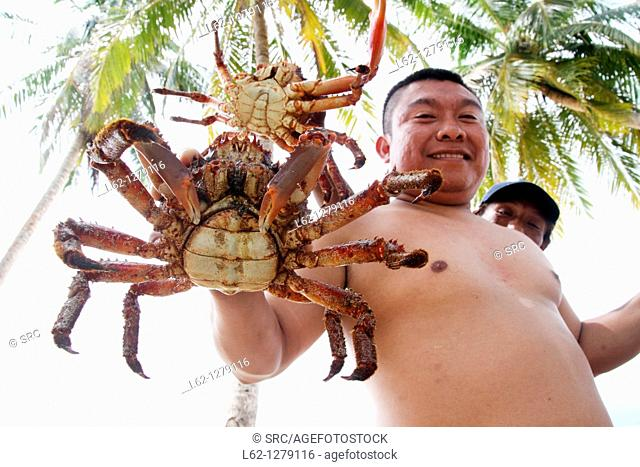 Kuna indian showing majid crab, Kuna Yala, San Blas Islands, Panama