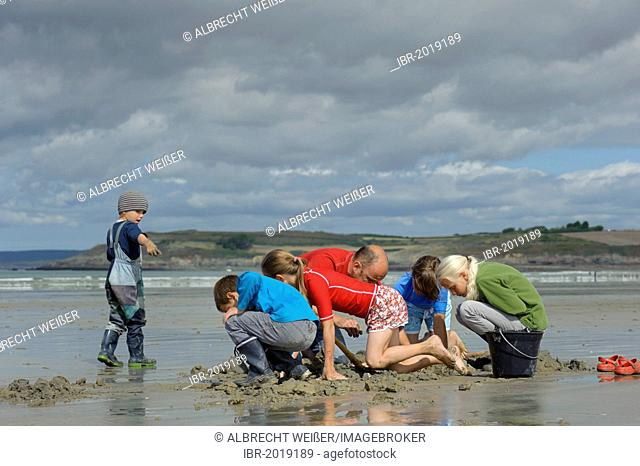 Young anglers and an adult digging for sandworms (Arenicola marina) on the beach, Atlantic Ocean, Finistere, Brittany, France, Europe, PublicGround