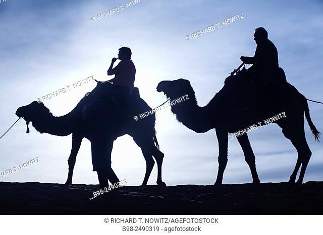 Tourist ride camels at Erg Chebbi, Morocco. Northern Sahara Desert