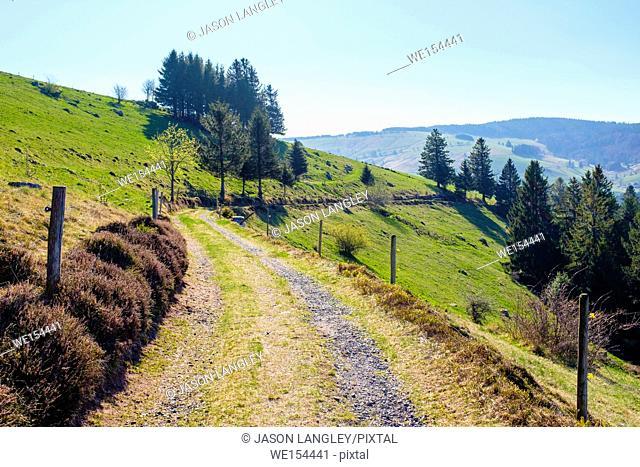 Mountainous landscape in the Upper Münster valley in early spring, Breisgau-Hochschwarzwald, Baden-Württemberg, Germany