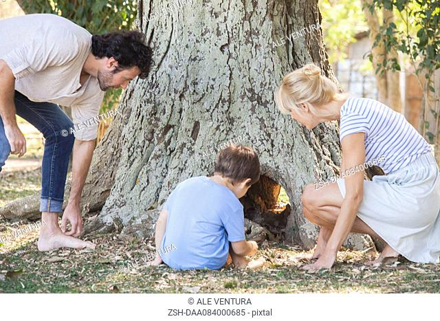 Family discovering hollow tree trunk