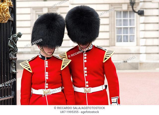 England, London, Buckingham Palace, Member of the Scots Guard at Buckingham Palace